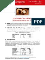 Ficha Tecnica Del Copoazu