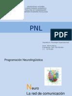 Programación Neuro Lingüística
