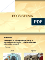 Vi Ecosistema