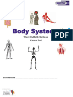 Body Systems Worksheet.bin