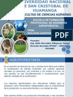 REALIDAD AGROFORESTAL DEL VRAE 2010