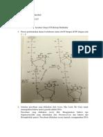 soal_soal_biologi_molekular.docx
