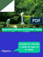 Tema 3. Relaciones Hidricas en La Celula Vegetal