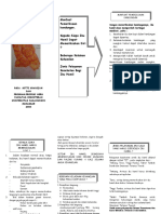 Leaflet pemeriksaan kehamilan.doc