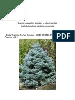 Referat Arboricultura Ornamentala