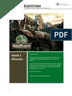 Dino x Week 1 Glossary