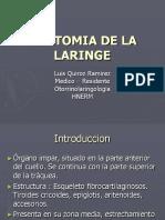 anatomiadelalaringe-120902181422-phpapp01