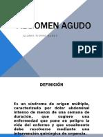 abdomenagudoafn-110213213220-phpapp01