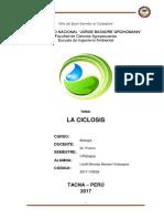 La Ciclosis