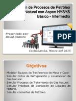 Simulación de Procesos de Petróleo y Gas Natural