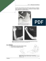 SebentaTNeural_09-10_ESTSP-Parte2.pdf