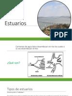 Estuarios ESPOL