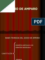 Bases Teoricas Del Ljuiciodeamparo en El Derecho Comparado