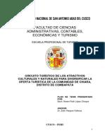 PLAN TESIS corregido4.docx