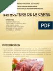 Estructura de La Carne