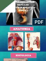 Cirugia (Erge)