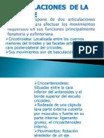 ARTICULACIONES (2)