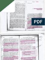 Winnicott_29_4_16_Preocupacion_Maternal_Primaria.pdf