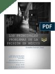 Derecho Penitenciario_ Trabajo Final