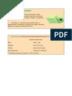 Azmafon-primeri-ugradnje.pdf