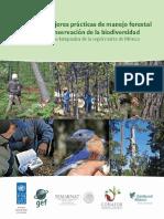 6317Manual de Mejores Prácticas.pdf