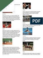 20 Tipos de Deportes