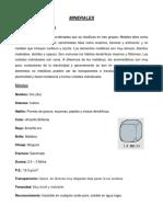 Elementos Nativos Baca Gallardo Tapia