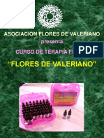 AFDV-CURSO FDV1