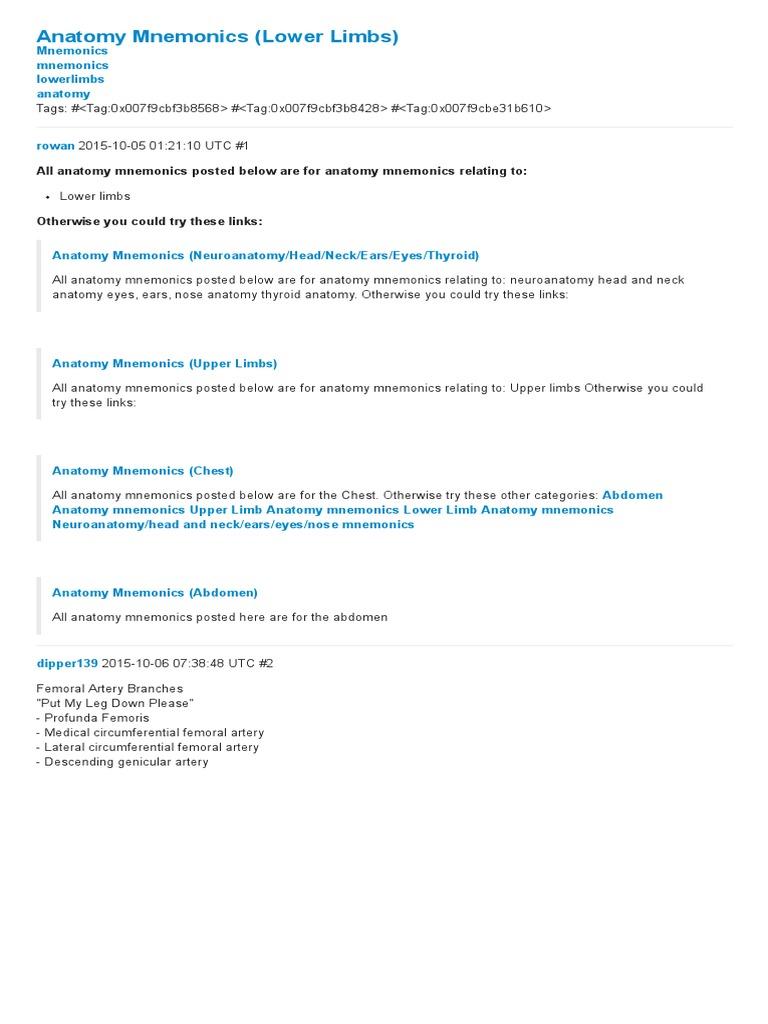 Anatomy Mnemonics (Lower Limbs) - Mnemonics - Mosaiced | Human Leg ...