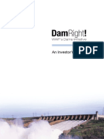 An Investors Guide to Dams.pdf
