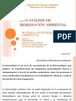 Biocatalisis de remediación ambiental.pptx