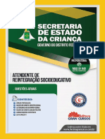 Secretaria de Estado Da Crianca Atendente de Reintegracao Socioeducativo 7898620620066