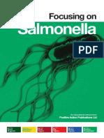 Focus on Salmonella