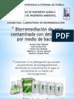 Biorremediación de agua contaminada con detergentes