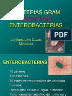 Enterobacterias i