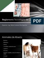Reglamento Tecnológico de Carnes
