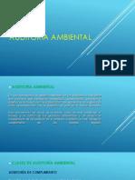 Auditoría-Ambiental_SIGES