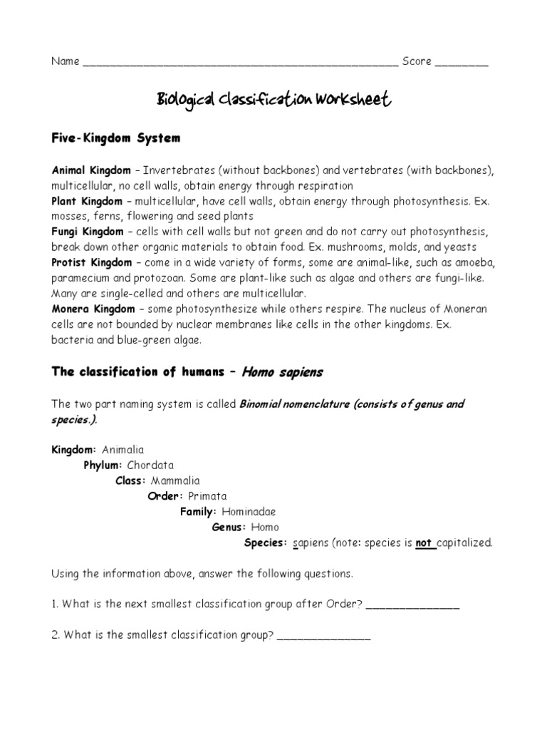 Classification Worksheets1 Pdf Taxonomy Biology