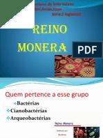 Reino Monera.pptx