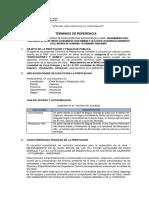 Modifica - Tdr-supervision i.e Coca Enrique y Misquiyacu