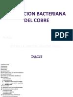 biolixiviacion del cobre