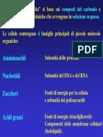 3 Amminoacidi e Peptidi