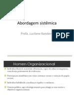 ABORDAGEM SISTEMICA