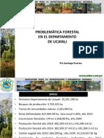 Tema 1. Problematica Forestal en Ucayali