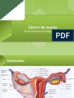 cncerdeovario-130521045728-phpapp01