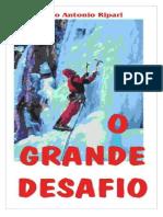 O Grande Desafio  - Marco Antonio Ripari.pdf