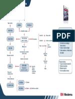 Mapas Conceituais Sociologia Capitulo 03 a Sociologia de E. Durkheim