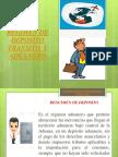 (4)Regimen de Deposito Transito y Aduanero