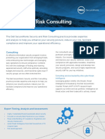 Datasheet Security and Risk Consulting