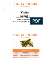 Visão Geral - Guia do Conjunto de Conhecimentos em Gerenciamento de Projetos.pdf